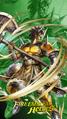 A Hero Rises 2020 Legion Masked Maniac.png
