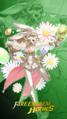 A Hero Rises 2020 Sharena Spring Princess.png