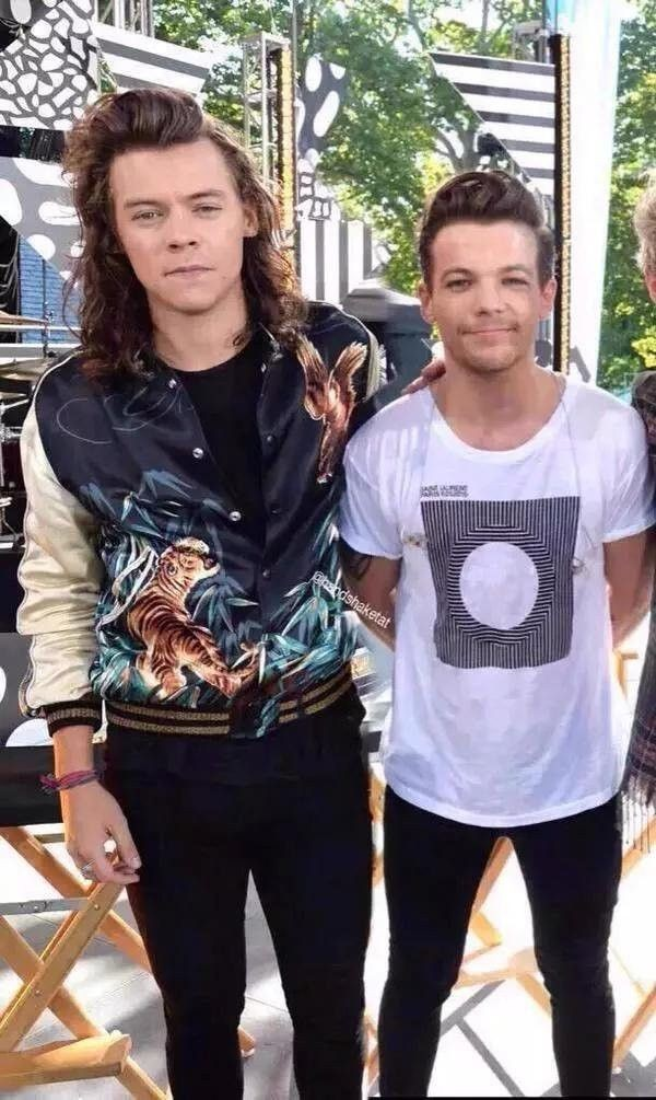 Louis And Harry S Height Difference Is One Of The Eight Wonders Of The World Fandom Harry styles height is 1.83 m, weight is 74 kg. louis and harry s height difference is