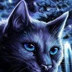 Brume Bleue's avatar