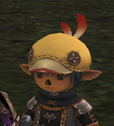 Chocobo beret