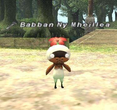 Babban Ny Mheillea