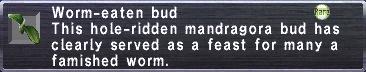 Worm-Eaten Bud