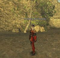 1st Gold Musketeer.jpg