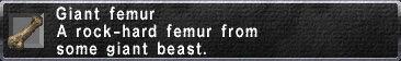 Giant Femur