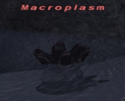 Macroplasm