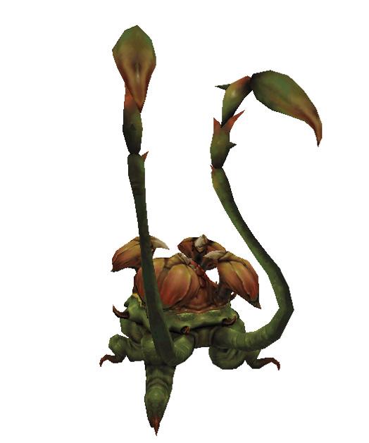 Rafflesia (MON)