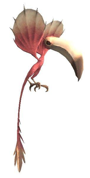Colibri (MON)