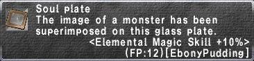 Elemental Magic Skill +10%