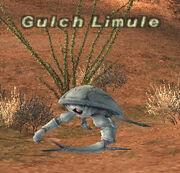 Gulch Limule.jpg