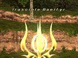 Irascible Baelfyr