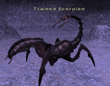 Trained Scorpion
