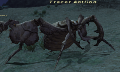 AfD Discussions/Image:Tracer Antlion.jpg