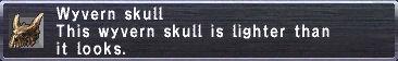 Wyvern Skull