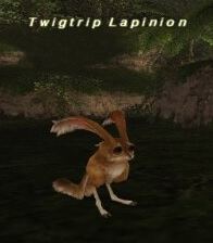 Twigtrip Lapinion