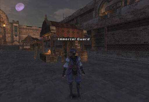 Immortal Guard