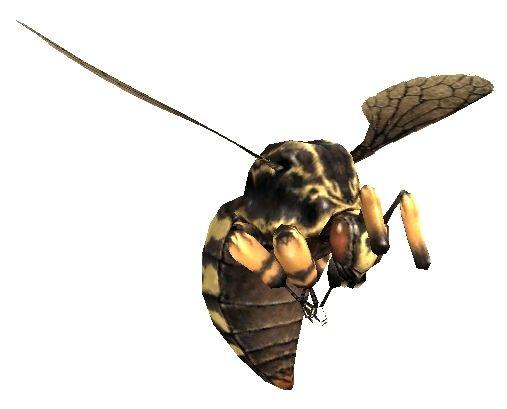 Bee (MON)