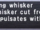 Shocking Whisker