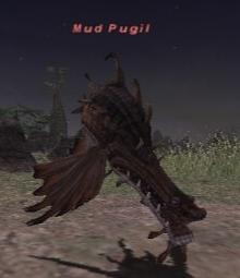 Mud Pugil