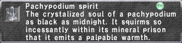 Pachypodium Spirit