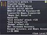 Anchorite's Gaiters +3