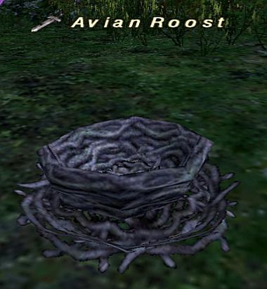 Avian Roost