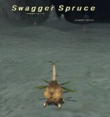 Swagger Spruce