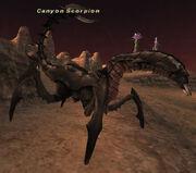 Canyon Scorpion.jpg