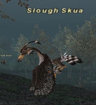 Slough Skua