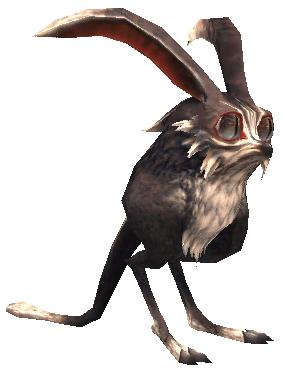 Onyx Rabbit (MON)