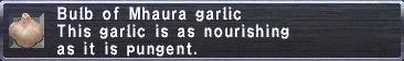 Mhaura Garlic