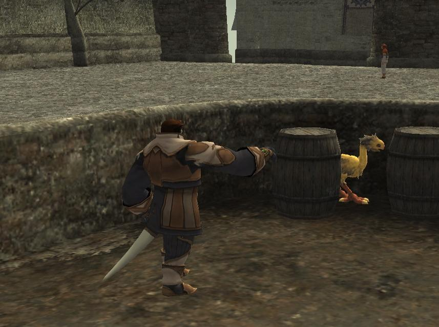 Chocobo Raising/Interact with Children