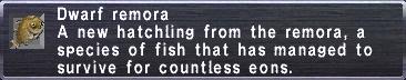 Dwarf Remora