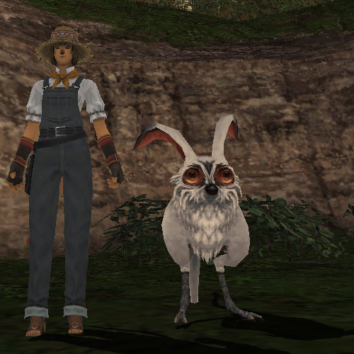 Monster Rearing/White Rabbit