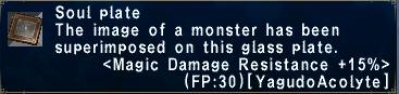 Magic Damage Resistance +15%