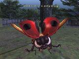 Goblin's Ladybug