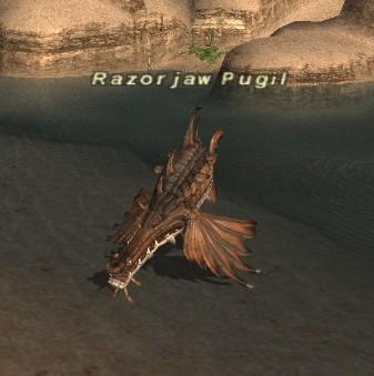 Razorjaw Pugil