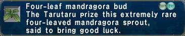 Four-Leaf Mandragora Bud