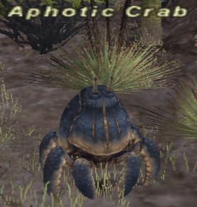 Aphotic Crab