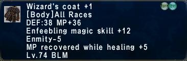 Wizard's Coat +1