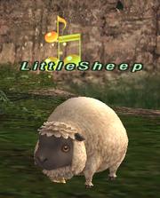 LittleSheep.png