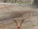 Teporingo