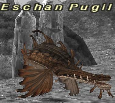Eschan Pugil