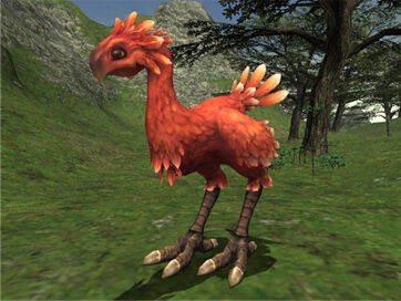 Additions and Adjustments to Chocobo Raising (09-25-2006)-1.jpg