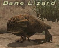 Bane Lizard