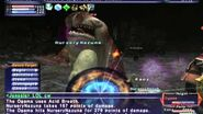 FFXI NM Saga 204 Ogama vs BSTs Full Battle