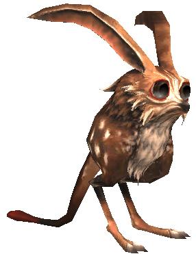 Rabbit (MON)