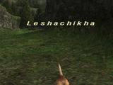 Leshachikha