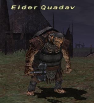 Elder Quadav