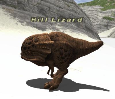 Hill Lizard